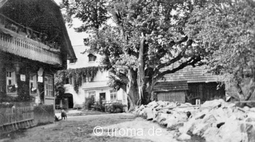 hof-haus-1928