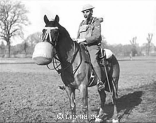 soldat-pferd-gasmaske-eb