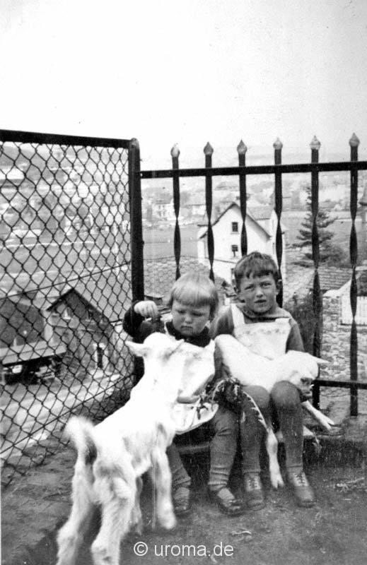 kind-zieglein-1907