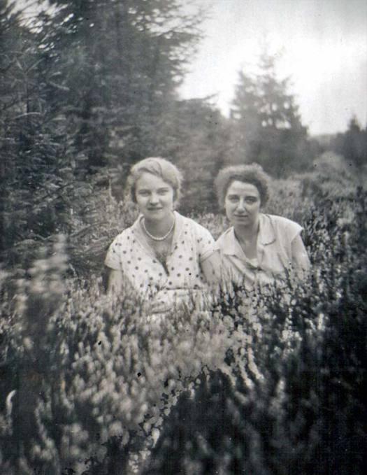 waldspaziergang-1913